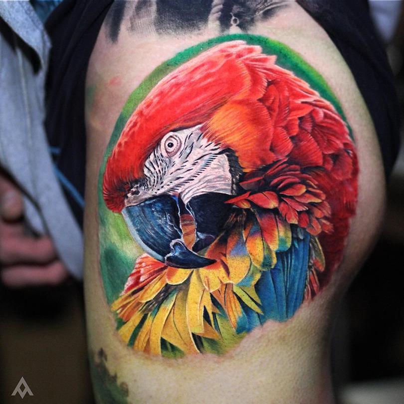 realistic macaw tattoo